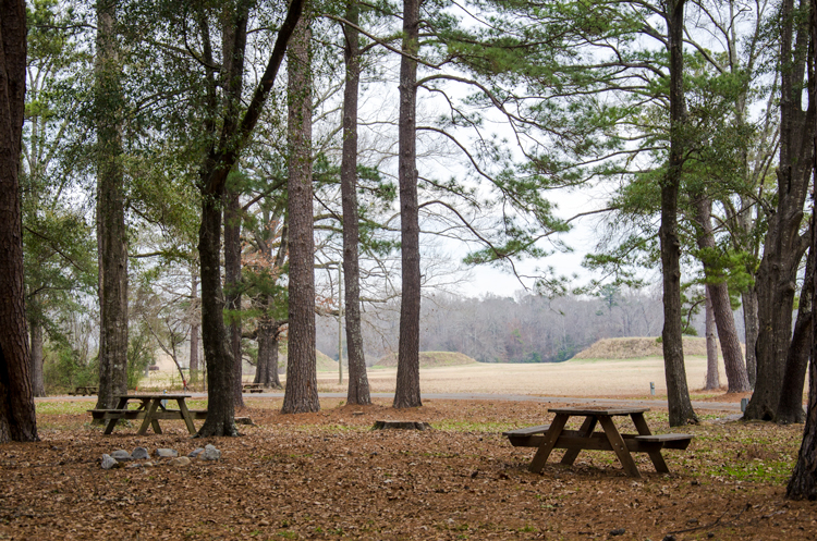 picnic tables at the campsite
